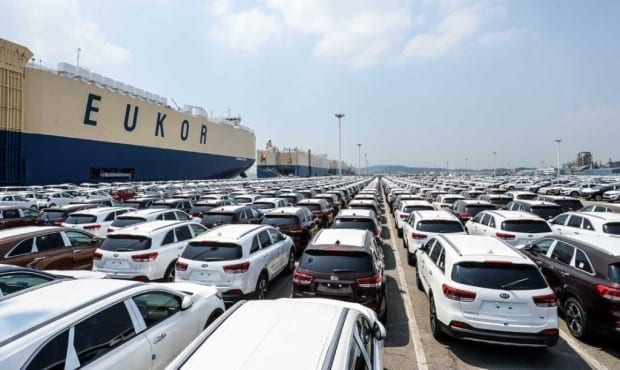 Kia cars awaiting shipment at Pyeongtaek Port_2