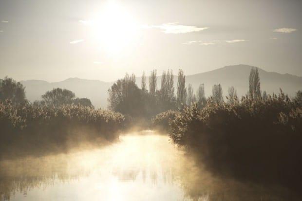 Bodensee - Wildnis am groflen Wasser