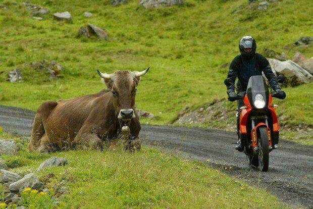 Highbike Paznaun